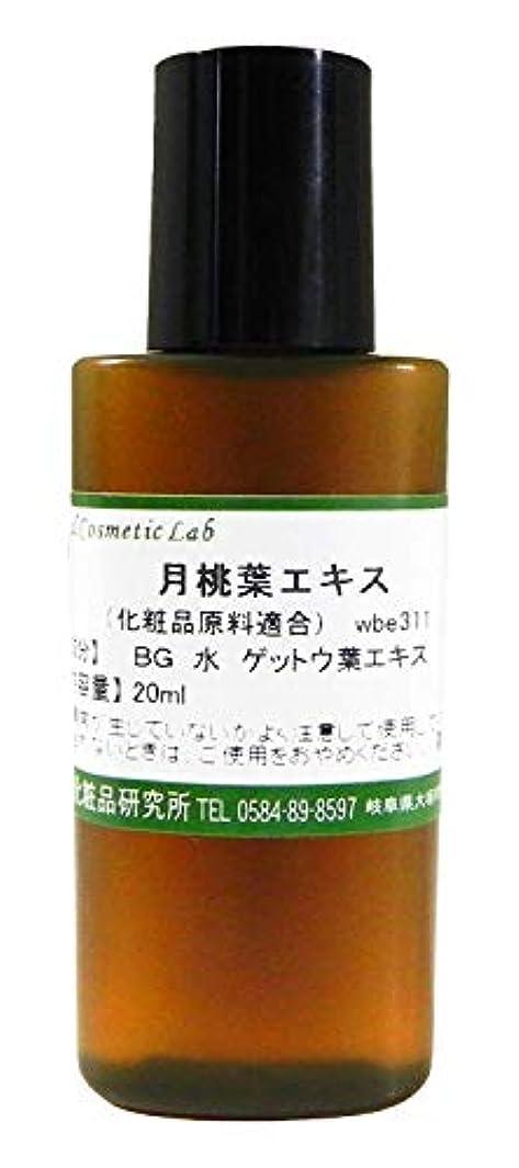 考古学的な落胆した糸月桃葉エキス 20ml 【手作り化粧品原料】