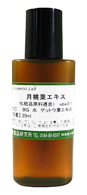 完璧な数学的な後方に月桃葉エキス 化粧品原料 20ml