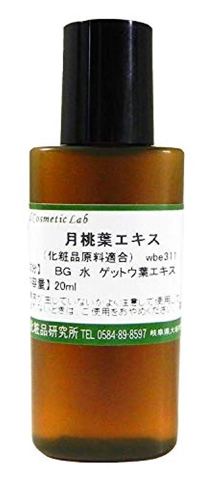 突っ込む流用する所有者月桃葉エキス 20ml 【手作り化粧品原料】