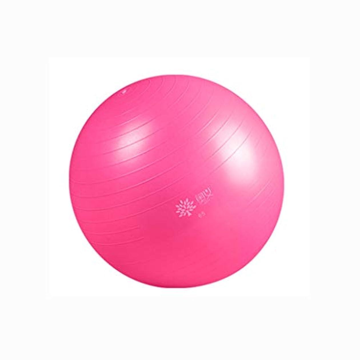 怠なお父さんタンザニアGCX- ヨガボール太い防爆初心者ジムボール妊娠中の女性助産師バランスヨガボール セキュリティ (Color : Pink, Size : 65cm)