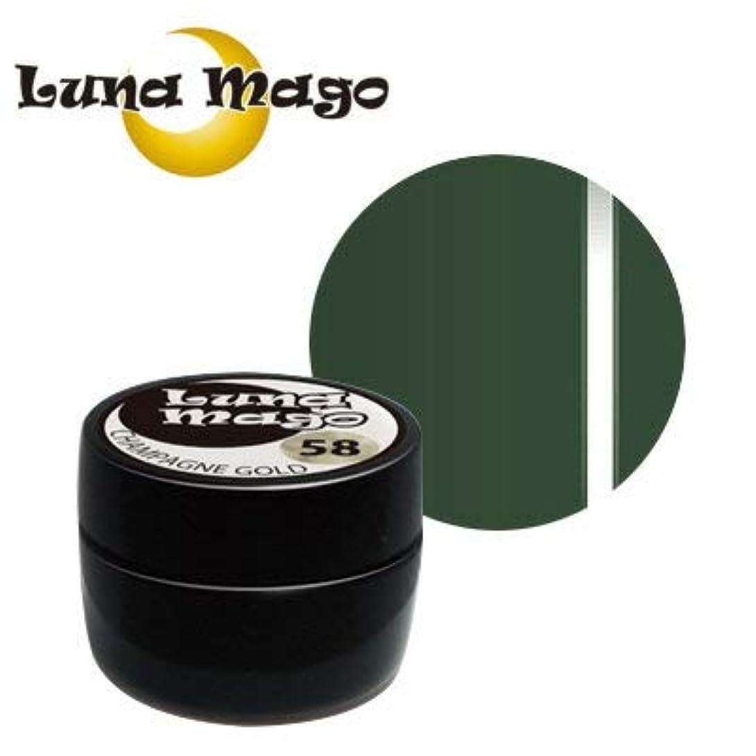 デジタル扱いやすい噛むLuna Mago カラージェル 5g 054 リーフ