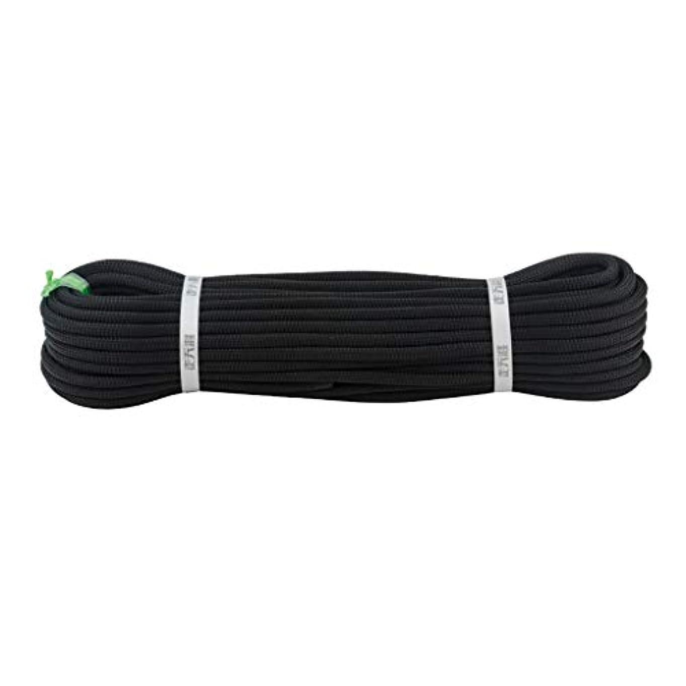 嘆く時期尚早宮殿KTYXDE クライミングロープスタティックロープナイロンロープ空中作業ロープ直径11/12/14 mm黒 クライミングロープ (Size : 12mm 10m)