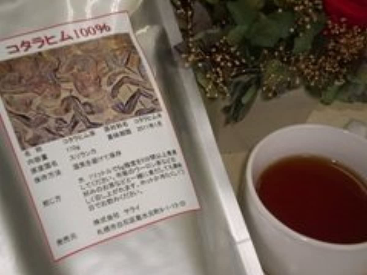 立証するヒロイック拒絶焙煎コタラヒム100%茶