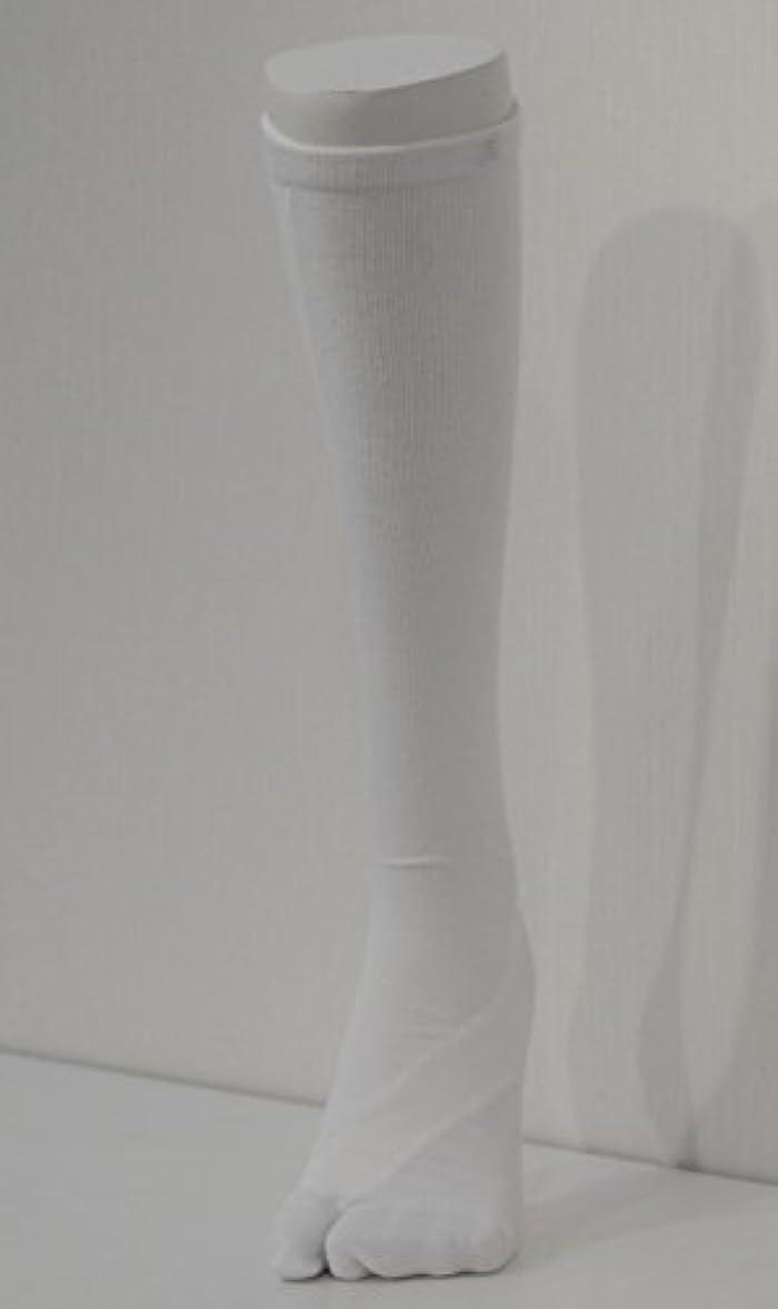 料理をするほこりよろしくさとう式 フレクサーソックス ハイソックス 白 (L) 足袋型