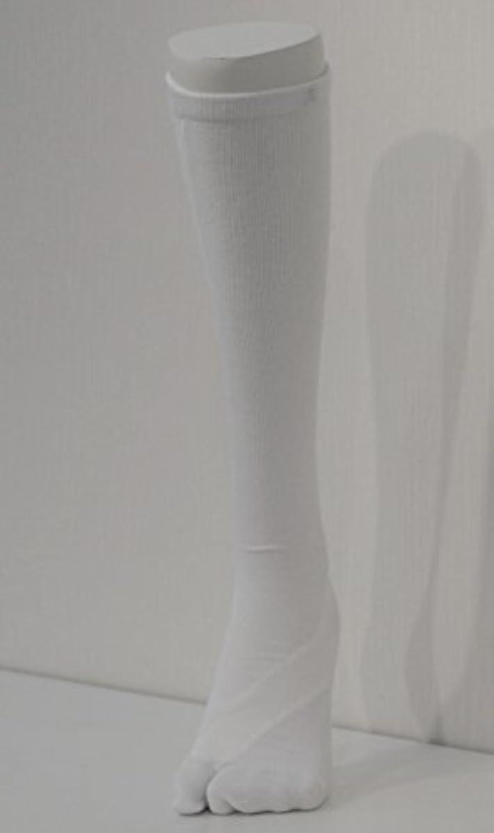 中庭自体ちらつきさとう式 フレクサーソックス ハイソックス 白 (L) 足袋型