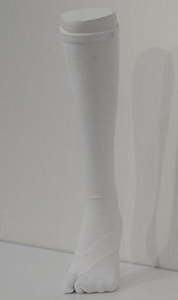 責任者未亡人現れるさとう式 フレクサーソックス ハイソックス 白 (L) 足袋型