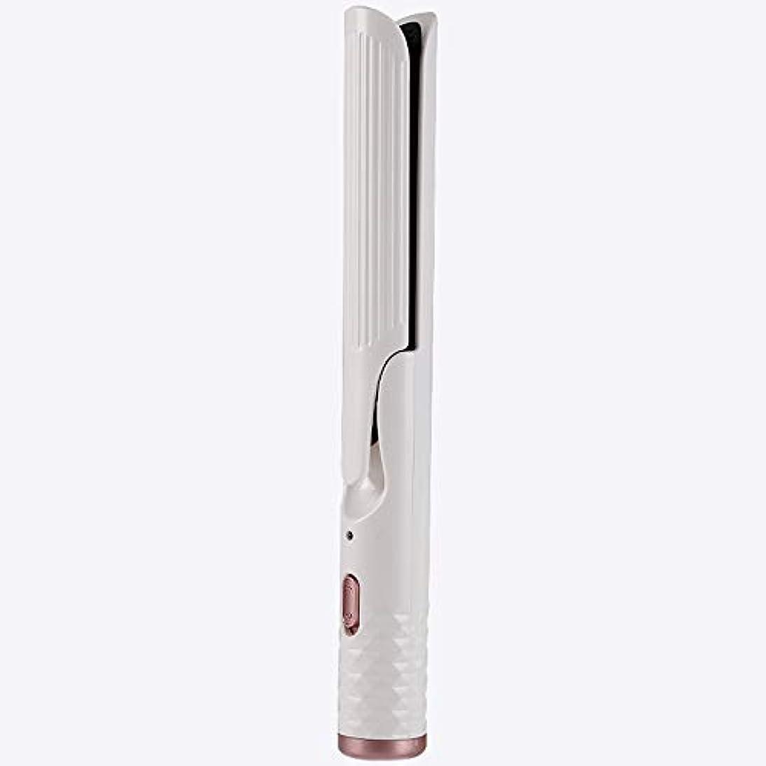 普通のヒープ反対したパーソナルケア 髪カーラー合板ストレートデュアルユースバックル自動ストレートカーリーヘア大韓国学生エッグロールヘッド (Color : B)