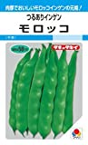 【種子】つるありインゲン モロッコ 30ml