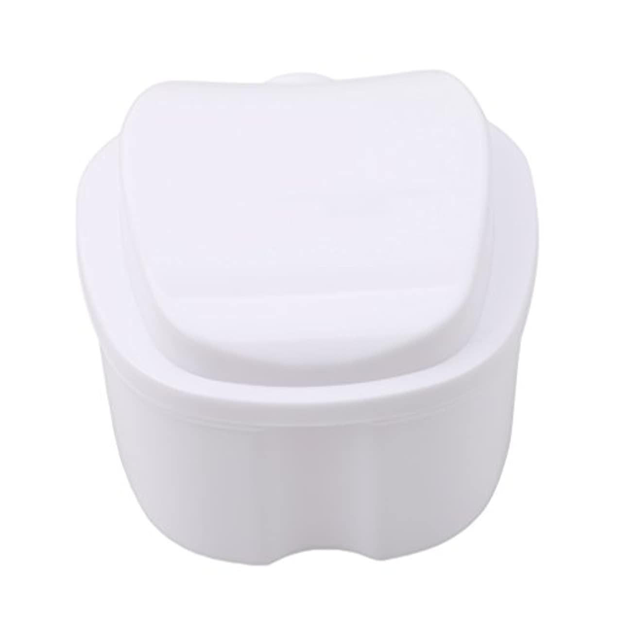 バイオレット航海のソファーHonel 収納ボックス 義歯収納用 リテーナーケース りんご柄 ホワイト