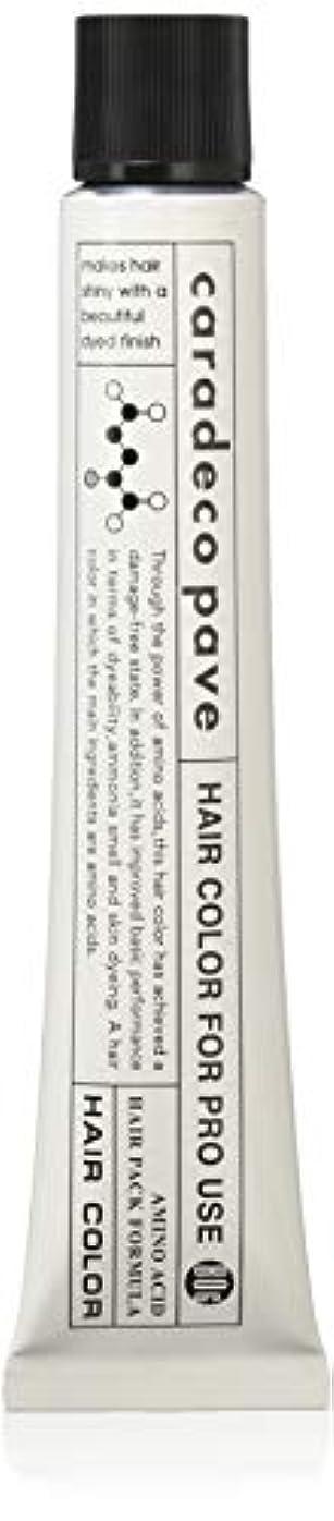 継続中調和フロー中野製薬 パブェ カッパーBr 9p 80