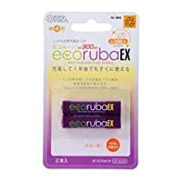 ecorubaEX/エコルーバEX ニッケル水素充電池 単4形2本パック 大容量900mAh BT-JUTG4H2P