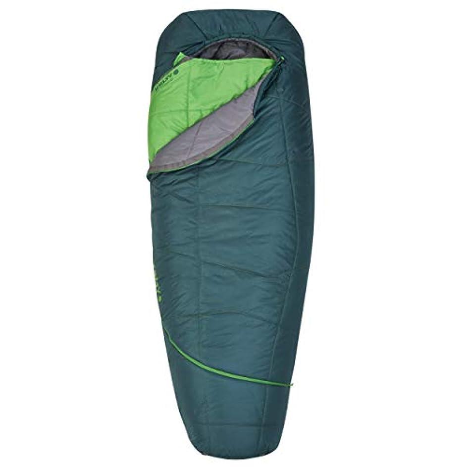 息を切らして動員するピーブKelty TRU Comfort 20 Degree Sleeping Bag, Long, Ponderosa Pine/Tree Top [並行輸入品]