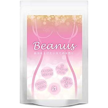 プエラリア プラセンタ ヒアルロン酸 イソフラボン アグアヘエキス 鉄 ビタミン 全12種類厳選配合 60粒 30日分 Beanus