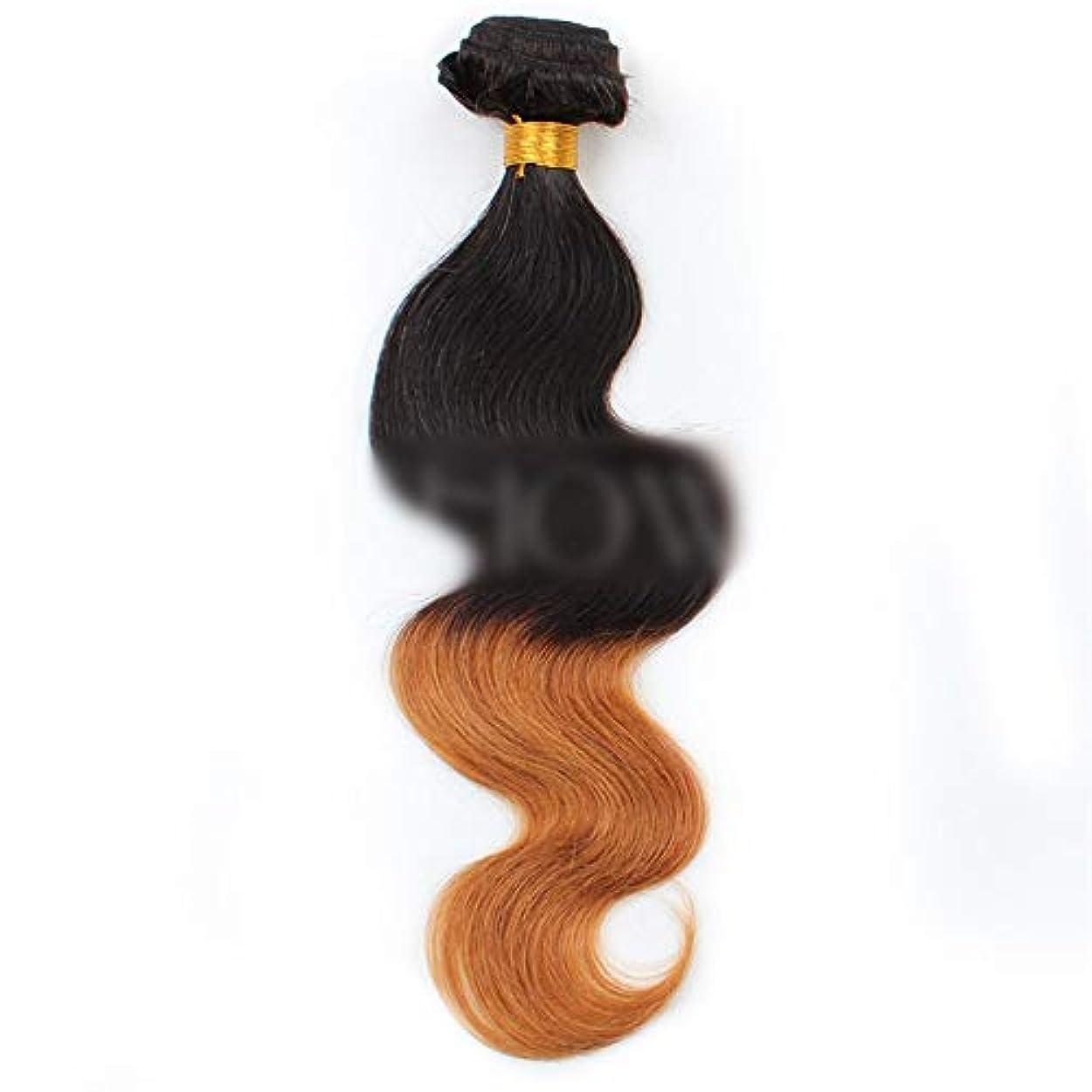 バンガロー分散優しさHOHYLLYA ブラジルの人間の髪の毛のボディ織り方ヘアエクステンション-1B / 30#黒から茶色へのグラデーショングラデーションカラー髪の織り方1バンドル、100g合成髪レースかつらロールプレイングかつら長くて短い...
