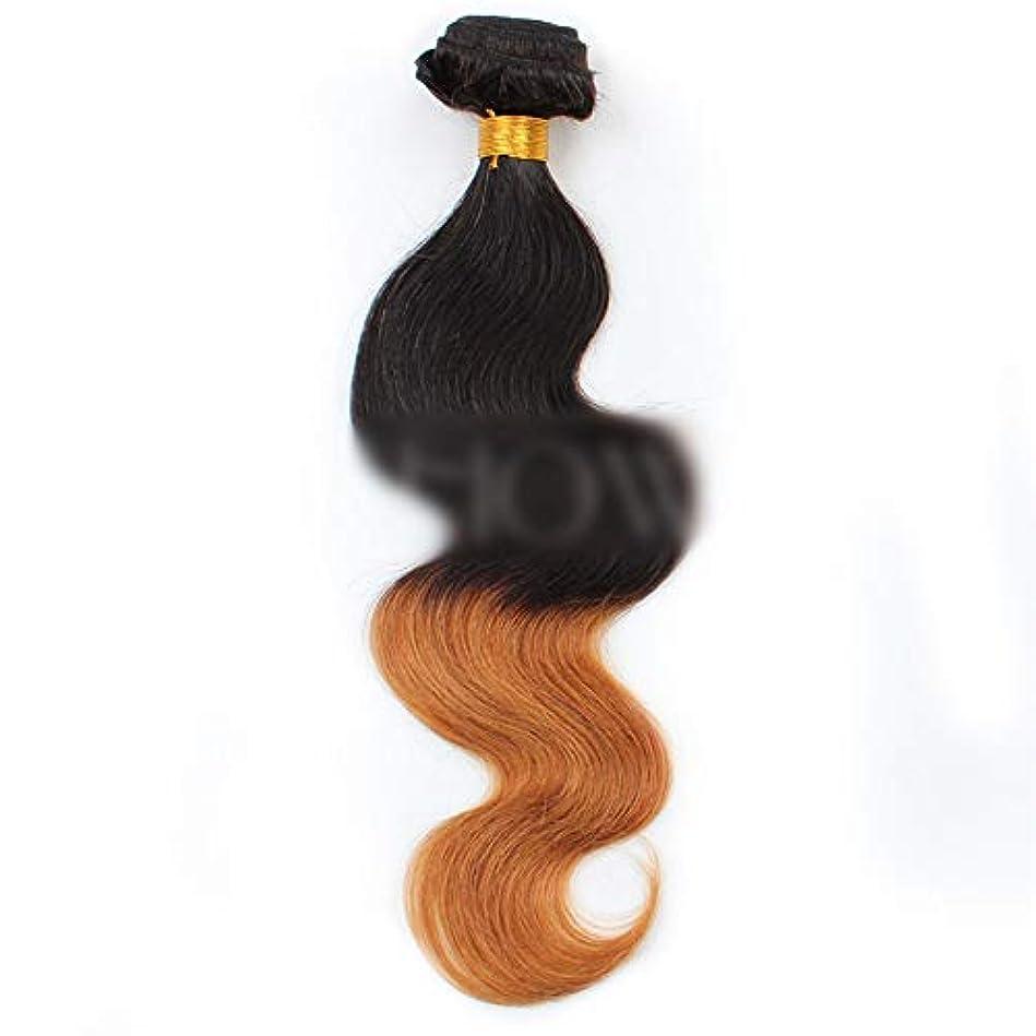 被害者トロリーバスデコラティブHOHYLLYA ブラジルの人間の髪の毛のボディ織り方ヘアエクステンション-1B / 30#黒から茶色へのグラデーショングラデーションカラー髪の織り方1バンドル、100g合成髪レースかつらロールプレイングかつら長くて短い女性自然 (色 : ブラウン, サイズ : 18 inch)