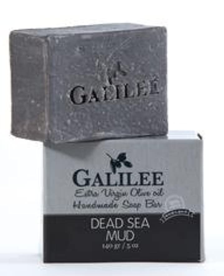 自伝協力負担ガリレー フェイシャルオリーブオイル&死海の泥ソープ 140g