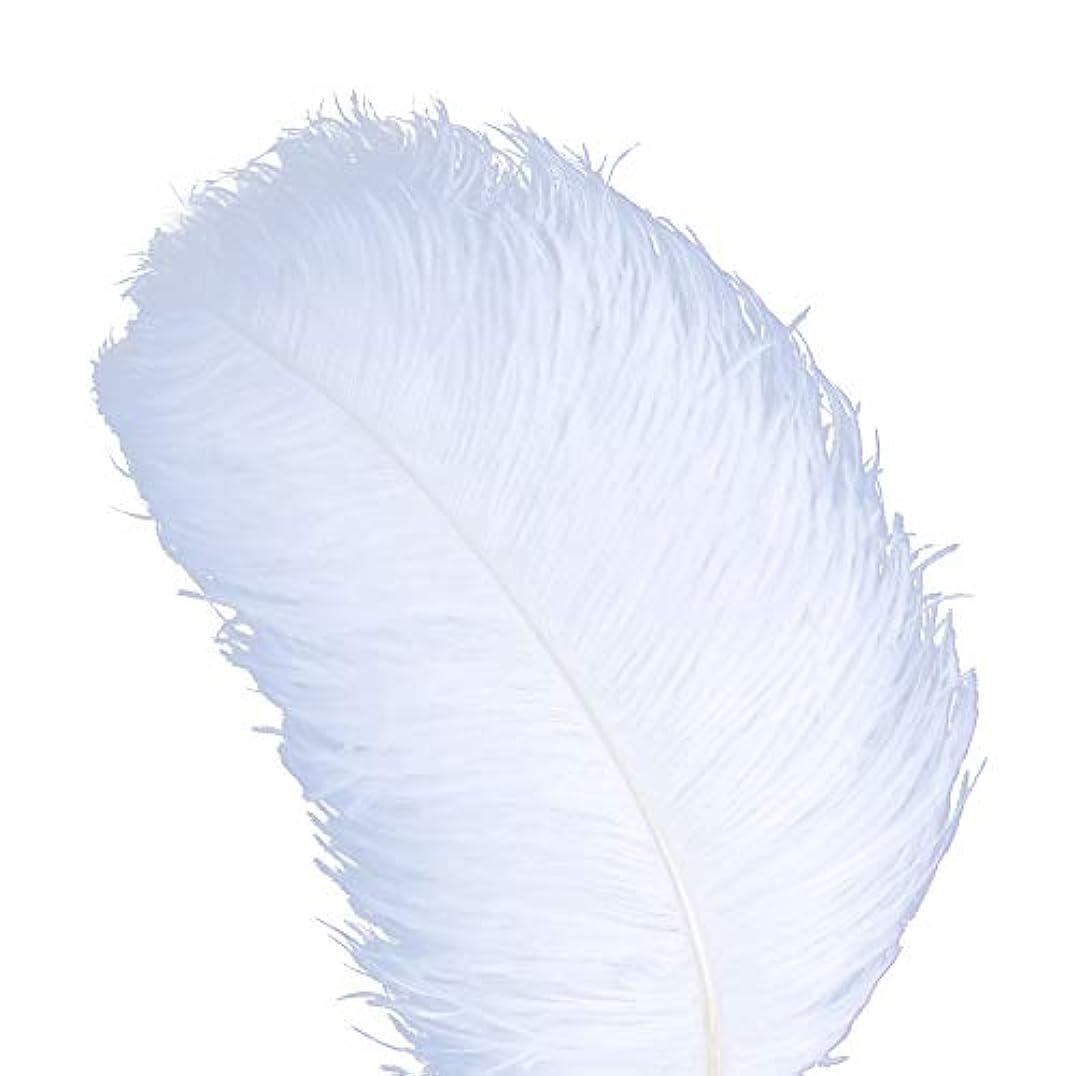 舗装する篭臭いAWAYTR 天然 18-20 インチ (45-50cm) オーストリッチ 羽 プラム 結婚式 センターピース ホームデコレーション 50pcs ホワイト 743070207763