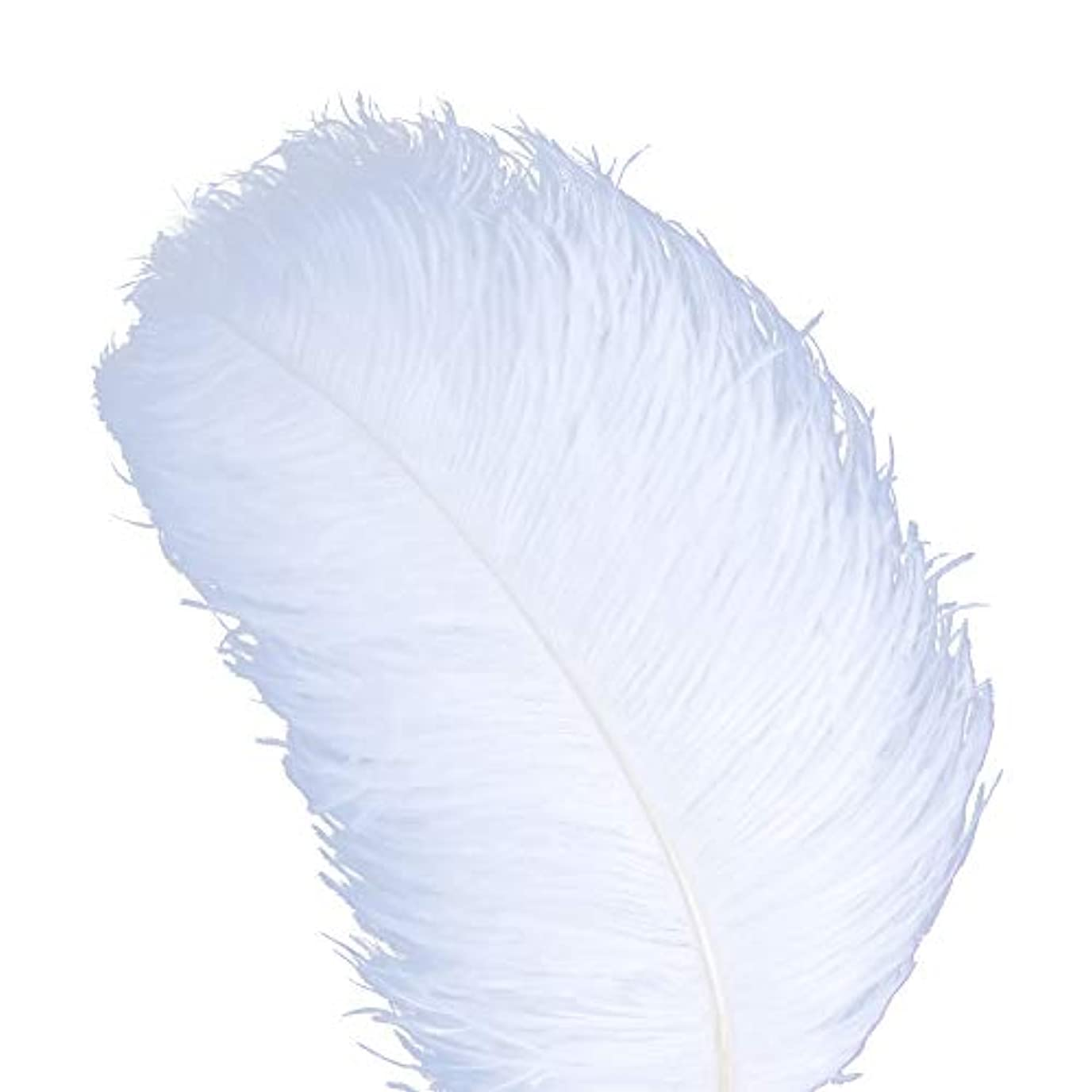 AWAYTR 天然 18-20 インチ (45-50cm) オーストリッチ 羽 プラム 結婚式 センターピース ホームデコレーション 50pcs ホワイト 743070207763