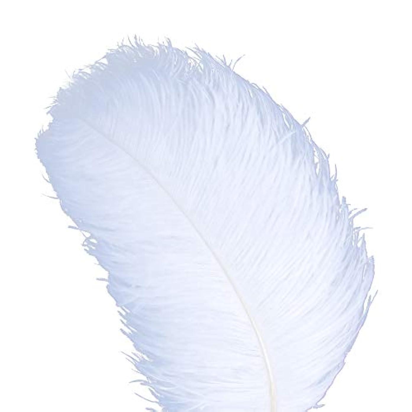 舞い上がる哲学もろいAWAYTR 天然 18-20 インチ (45-50cm) オーストリッチ 羽 プラム 結婚式 センターピース ホームデコレーション 50pcs ホワイト 743070207763