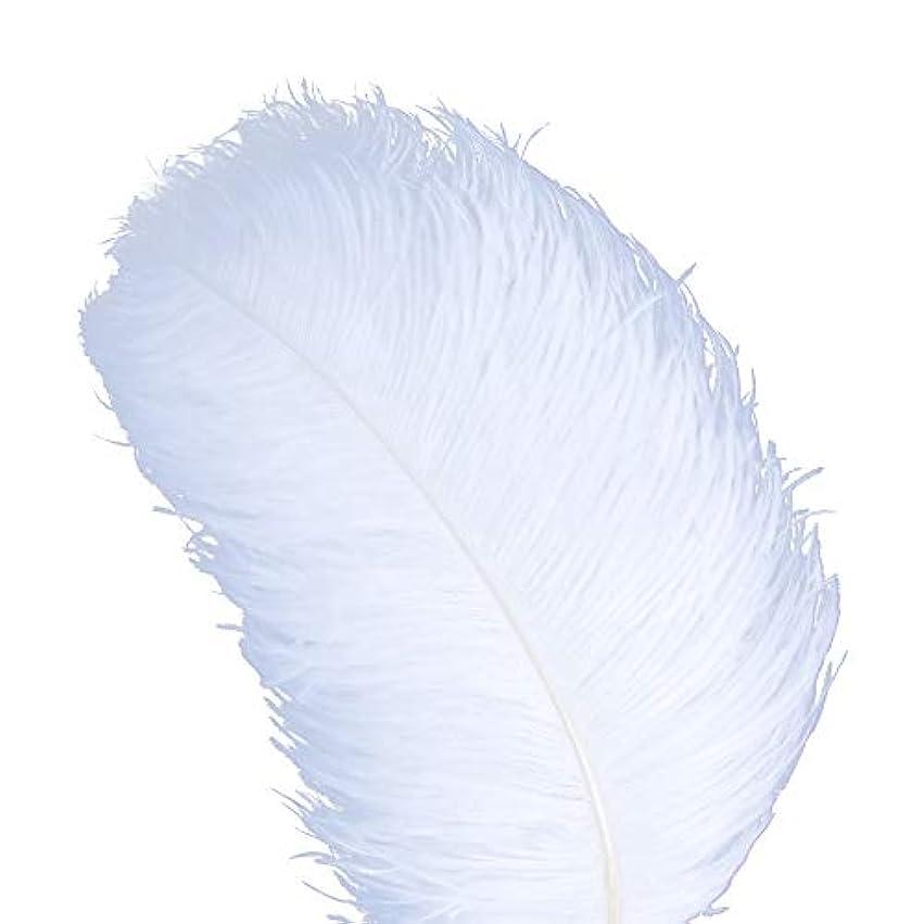 あそこジレンマ出口AWAYTR 天然 18-20 インチ (45-50cm) オーストリッチ 羽 プラム 結婚式 センターピース ホームデコレーション 50pcs ホワイト 743070207763