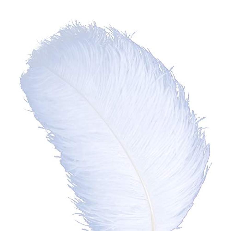 まぶしさ十分に見つけたAWAYTR 天然 18-20 インチ (45-50cm) オーストリッチ 羽 プラム 結婚式 センターピース ホームデコレーション 50pcs ホワイト 743070207763