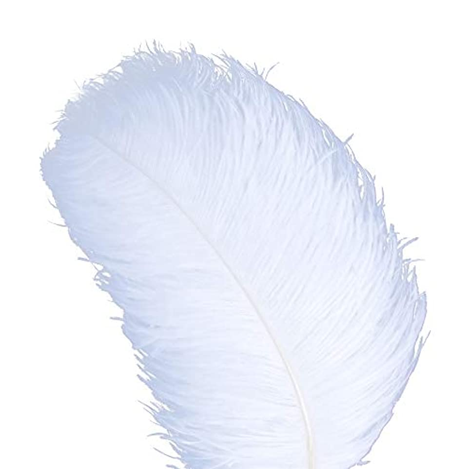 申し込む違反蓄積するAWAYTR 天然 18-20 インチ (45-50cm) オーストリッチ 羽 プラム 結婚式 センターピース ホームデコレーション 50pcs ホワイト 743070207763
