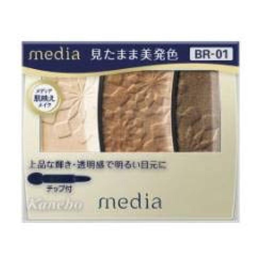 高さ乞食ミシン【カネボウ】 メディア グラデカラーアイシャドウ BR-01