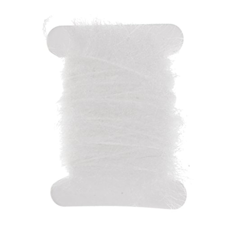 換気有名人分注するFenteer 釣りルアー 餌 ライン 糸 DIY 手作り フライフィッシング 約5m 明るい色 多色選べ