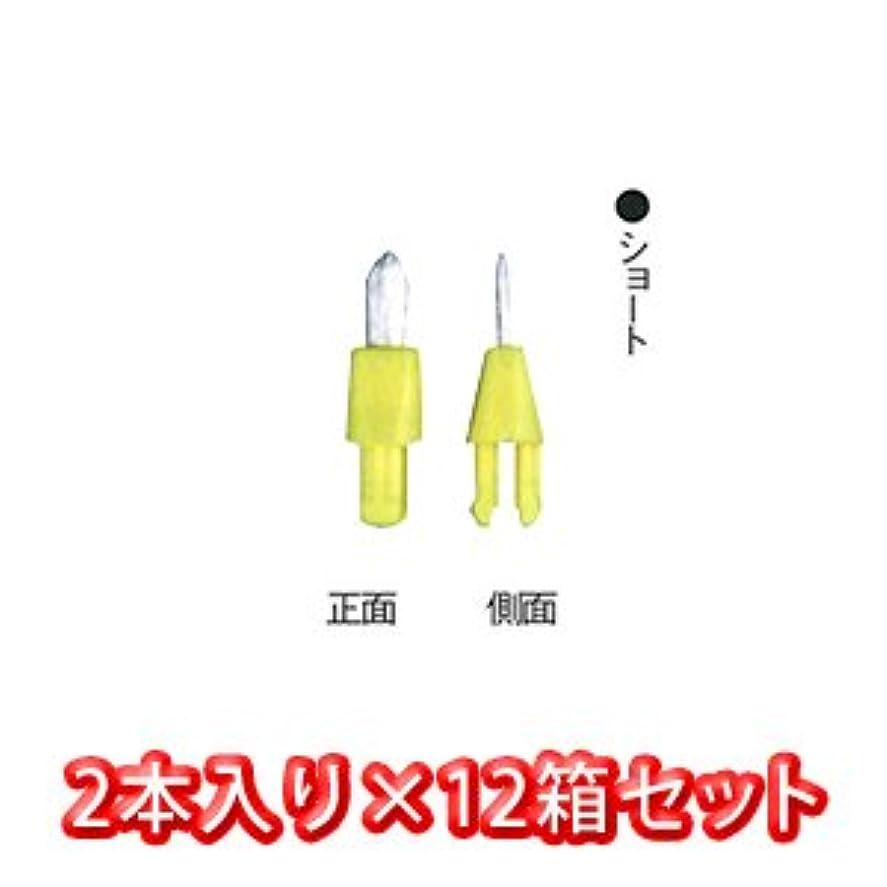 選ぶ海外ハムポケット ? クリーナー 専用 替え ブラシ 2個入 × 12箱 ショート