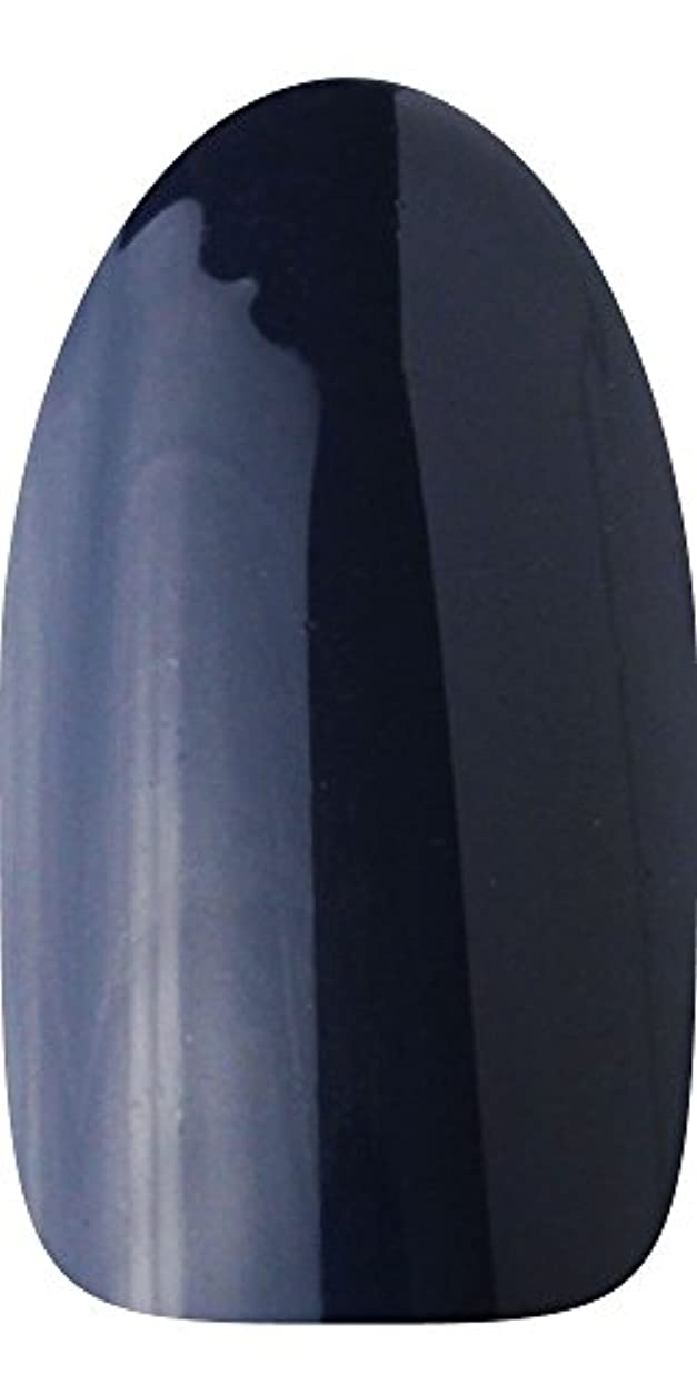 返還疫病アンソロジーsacra カラージェル No.174 藍染