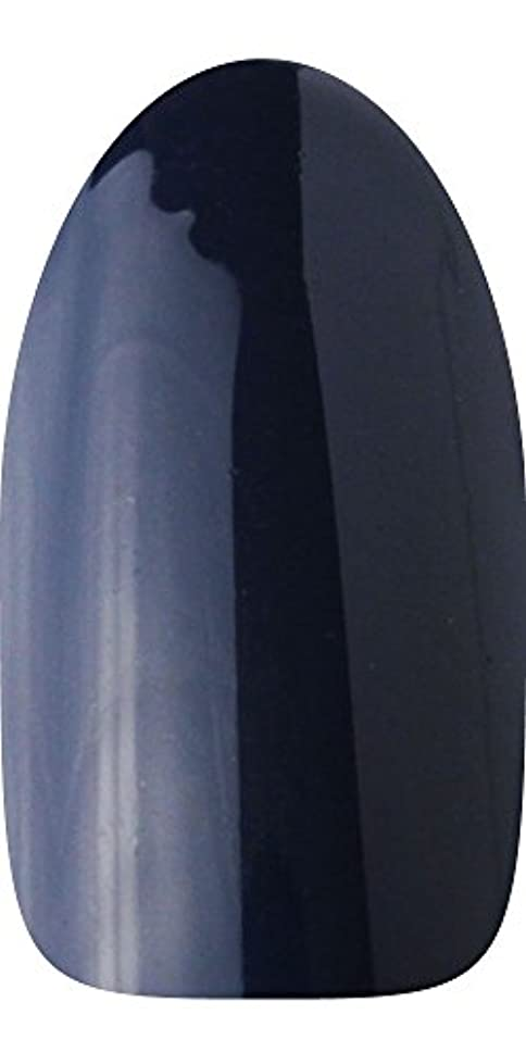 リフト領事館ナースsacra カラージェル No.174 藍染