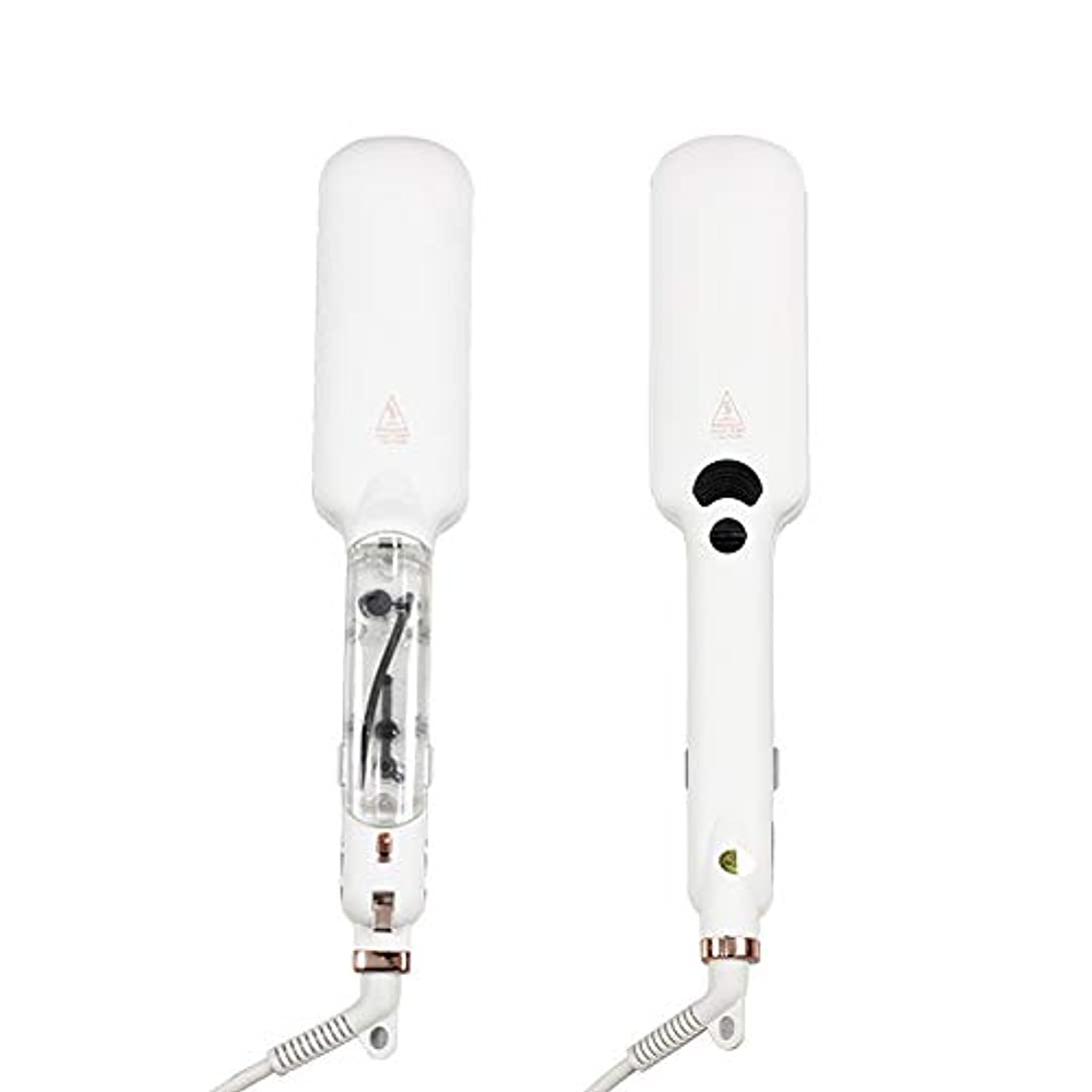 ドラム電気的傷つきやすいプロフェッショナルスチームヘアストレートナーセラミック蒸気赤外線加熱フラットアイアン2インチストレートニングフラットアイアンヘアスタイリングツール
