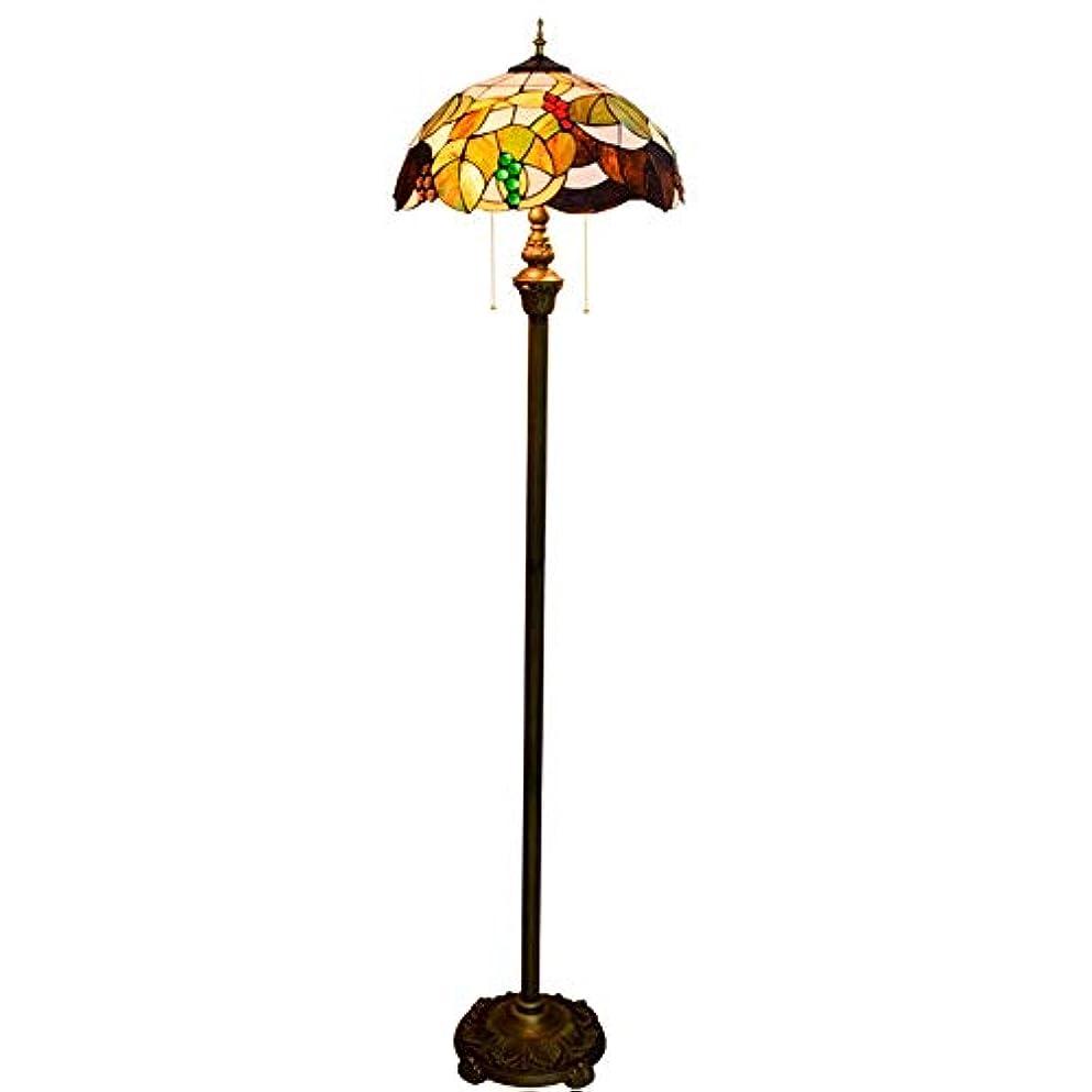 チャーター食事を調理する硬いZhaoXin Chen 16インチヨーロピアンスタイルのハイグレードな茶色のブドウガラスフロアランプピュア垂直読書ランプのための研究リビングルームのベッドルームの装飾