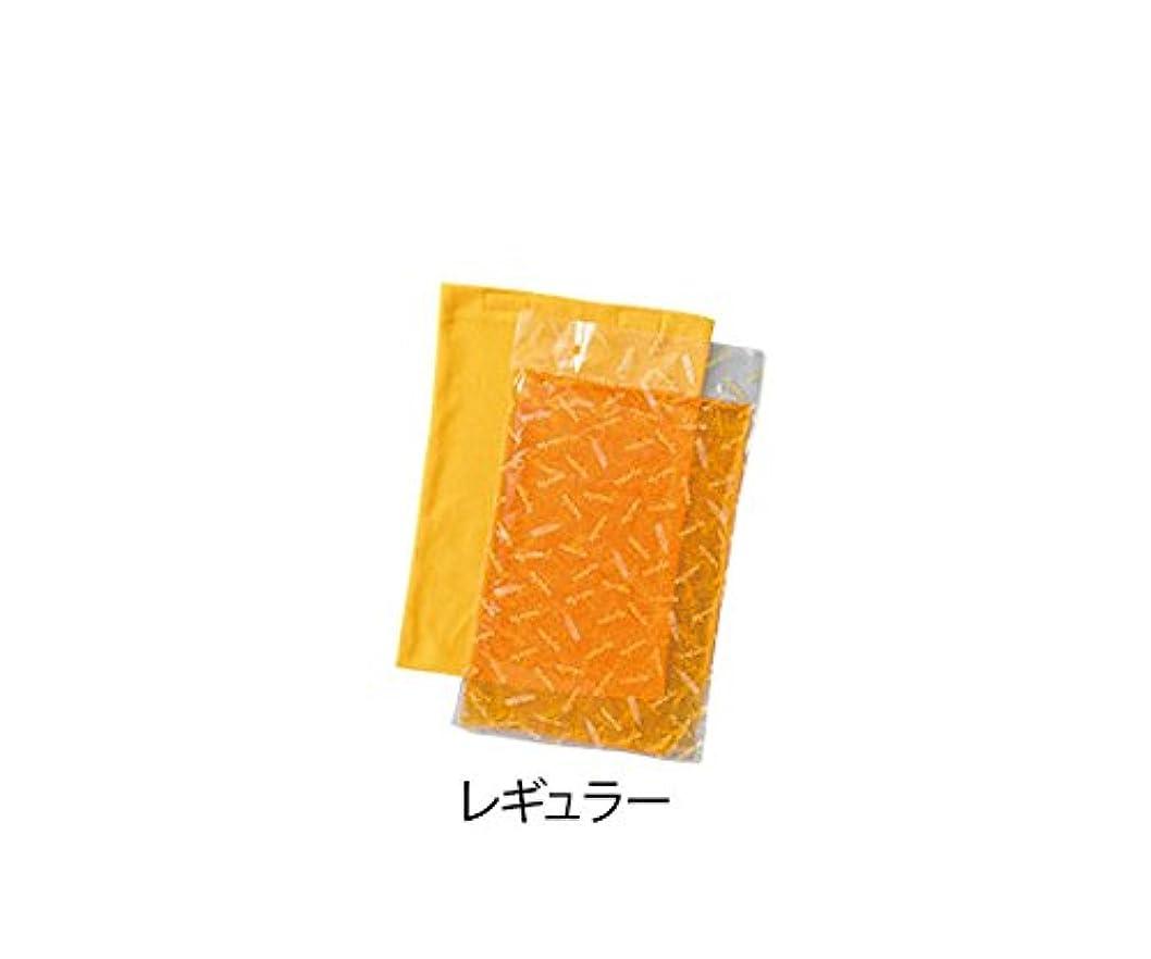 ライム欠伸機動プロシェア 冷やせるホットパック レギュラー /7-4569-02
