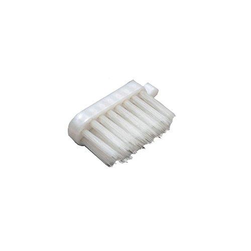サレド ヘッド交換式歯ブラシ レギュラーヘッド 替えブラシ6個セット