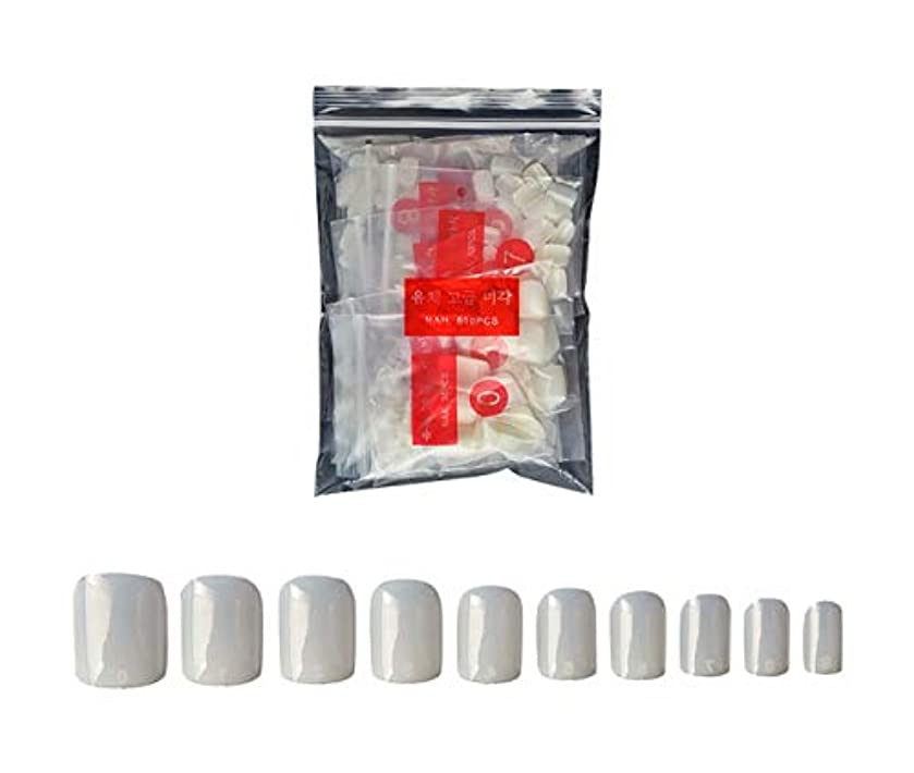 準備ができて泣く驚いたTianmey ナチュラルまあネイルのヒントハーフカバー偽の釘自宅でネイルサロンやDIYネイルアートのための10個のサイズを(ナチュラル) (Color : Natural)