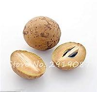23:レアodillaフルーツ種子種子Mango.fruit 23と同様にサポジラ日本庭園シード甘い形状に対して30個のハートフルーツ