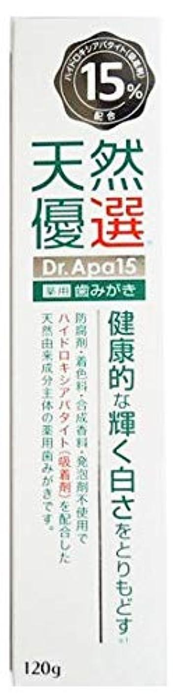 裁判官楽観的複雑な天然優選 薬用歯みがき Dr.Apa15 120g