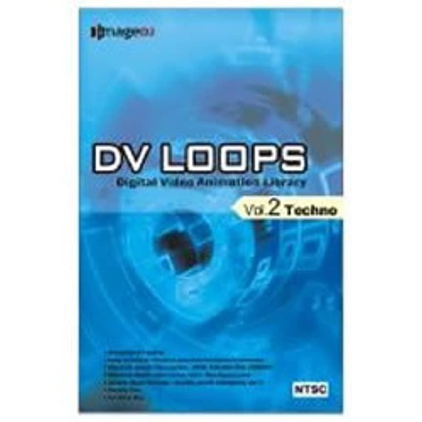 ハッピー見物人ビルマDV LOOPS Vol.2 テクノ