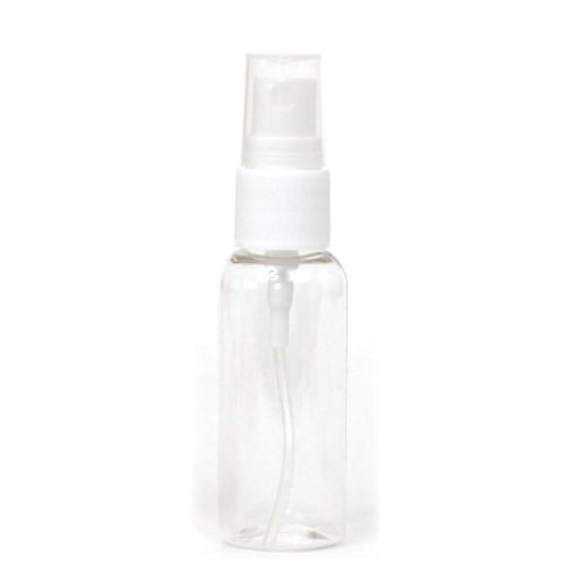 チャップシャワー鎮痛剤スプレー容器 30mL 5本セット 空ボトル30-5