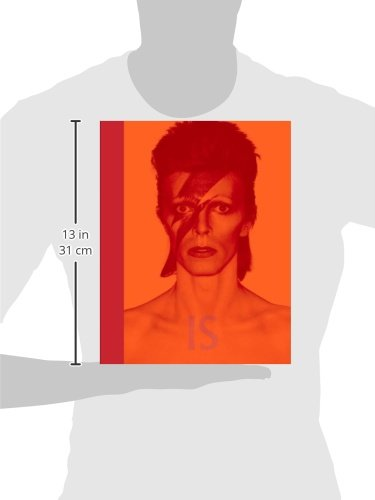 David Bowie Is... (Museum of Contemporary Art, Chicago: Exhibition Catalogues)