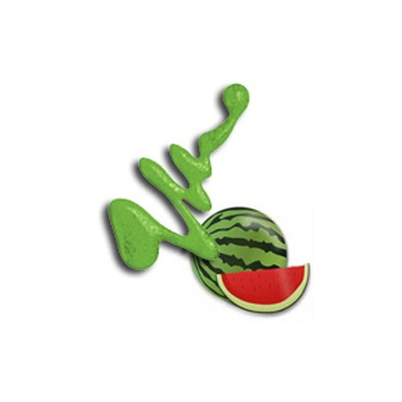 海上昼食に慣れ(6 Pack) LA GIRL Fruity Scented Nail Polish - Watermelon Splash (並行輸入品)