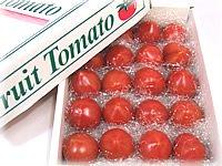 高知県産フルーツトマト小箱約800g