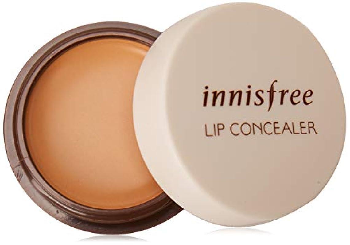 ひまわり抽象化器具INNISFREE Tapping Lip Concealer (並行輸入品)