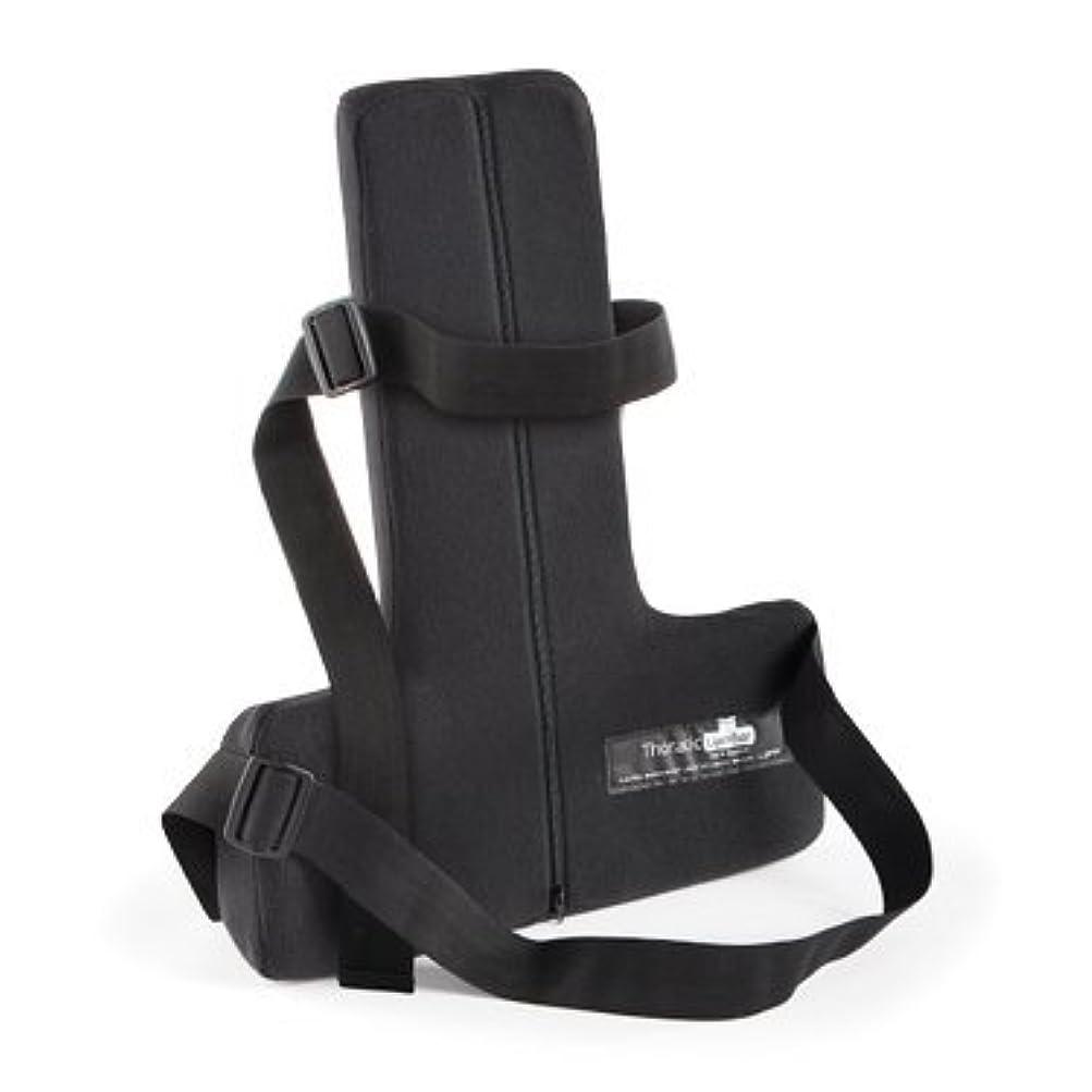 中にフルーツ排除するオーピーティー 自宅 車内 オフィス 椅子腰椎サポート 正しい姿勢で背中 肩 首への負担を減らすクッション