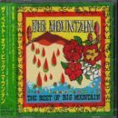 Best of: Big Mountain by Big Mountain (1998-03-24)