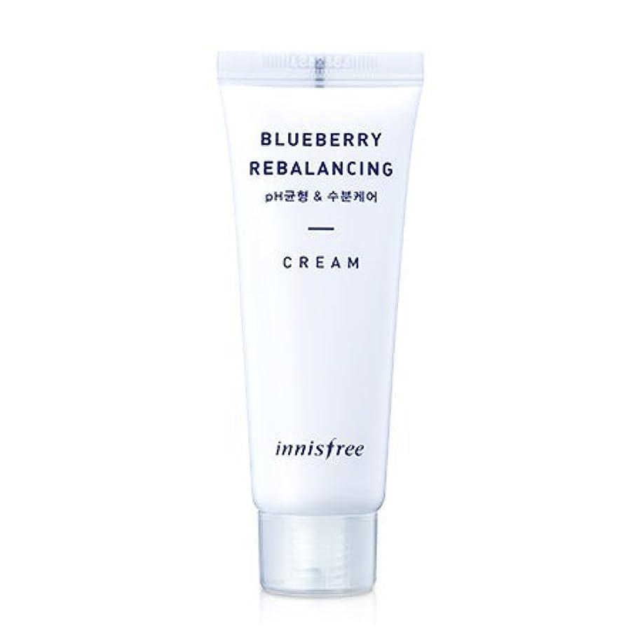パントリー調和のとれた迷惑[innisfree(イニスフリー)] Super food_ Blueberry rebalancing cream (50ml) スーパーフード_ブルーベリーリベルロンシンクリーム[並行輸入品][海外直送品]
