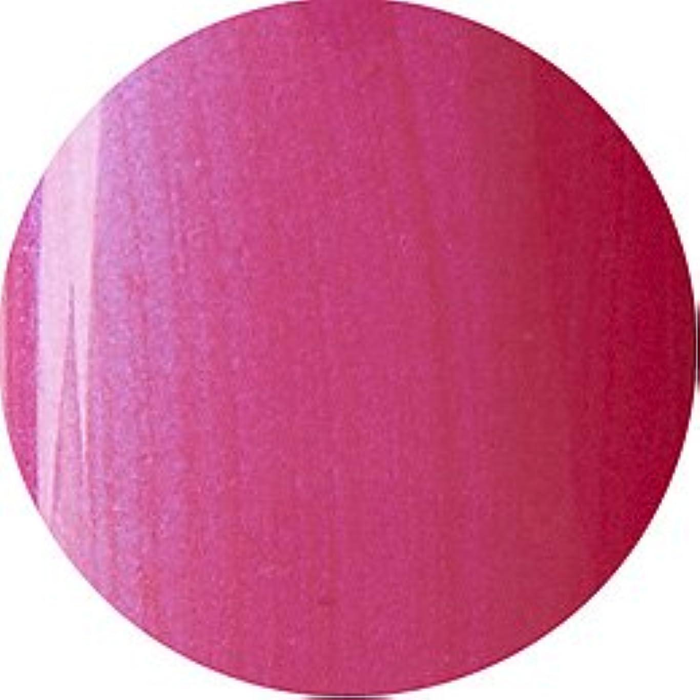 送信する色居心地の良いCND シェラック UVカラーコート7.3ml 506 トゥッティフルッティ