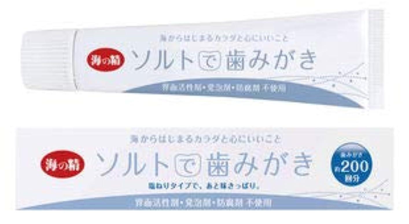 持続的手荷物天国ソルトで歯みがき(ねりタイプ)60g