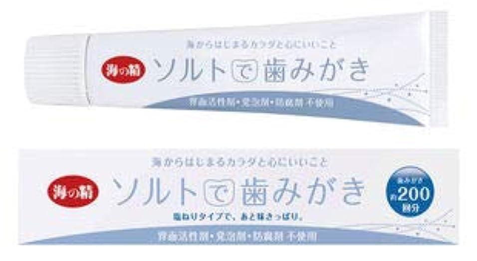 ガイドライン砂利冷笑するソルトで歯みがき(ねりタイプ)60g